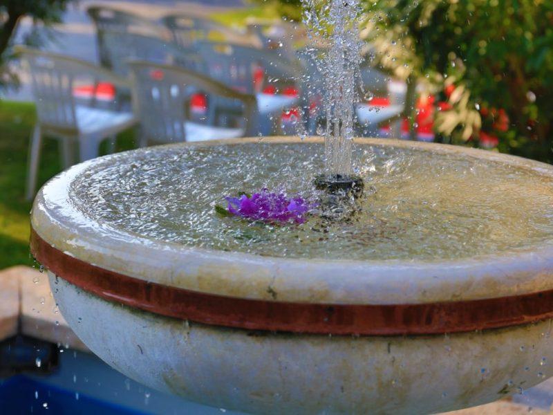 particolare della fontana del giardino